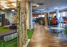 Réaménagement de 3 plateaux de bureaux compris éléments décoratifs